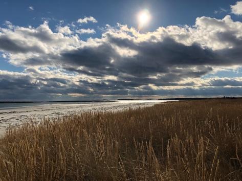 goose rocks beach, kennebunkport